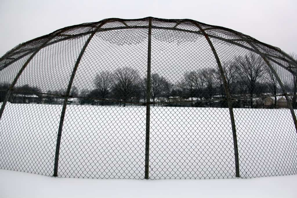 Eddie Mayo Field